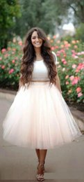 Wholesale Knee TUTU Tulle Skirt Pink Summer Bouffant A line Elastic Noble Skirts Party Prom Dress Best Price Hot Selling Top Quality