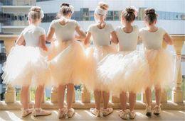 Wholesale Lovely Flower Girls Tutu Skirt Dresses For Weddings 2016 Light Pink Puffy Knee Length Cheap Formal Communion Dresses For Kids