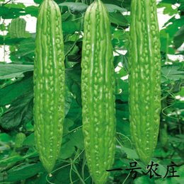 Wholesale 2016 Long Bitter Gourd Seeds Glossy Dark Black Seeds Easy To Plant Vegetable Seeds Of Bitter Gourd Seed Family Balcony Potted Species HY1171