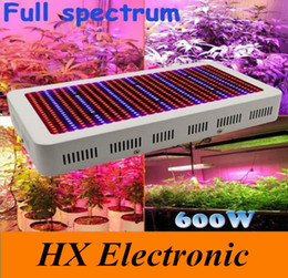 Wholesale High Quality W Full Spectrum LED Grow Light Red Blue White UV IR AC85 V SMD5730 Led Plant Lamps years warranty