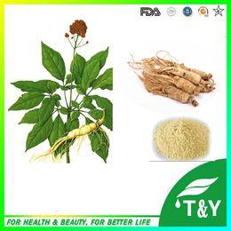Wholesale Natural Ginseng Extract Panax Ginseng Root Extract Ginseng Powder Ginsenosides g