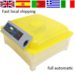 Wholesale Top selling transparent Mini full automatic egg incubator chicken egg incubator for sale from Germany