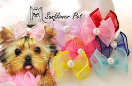 2015 Pet Bows Hairpin headdress flower Dogs Hair Accessories Baked white gauze edge ribbon Bow hair clips 20pcs
