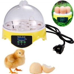 Wholesale Freeshipping Mini Egg Incubator Poultry Bird Pet Hatcher Digital Clear Temperature Control
