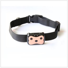 Wholesale new product Deest waterproof tracker long standby time dog cat Pet personal gps tracker IOS Andriod App free website service