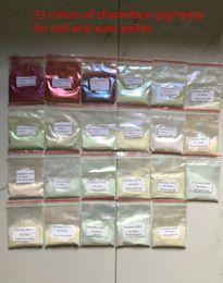 Wholesale 23 items Chameleon pearl Pigment kits color travel pigment kits for cosmetics auto paints nail polish