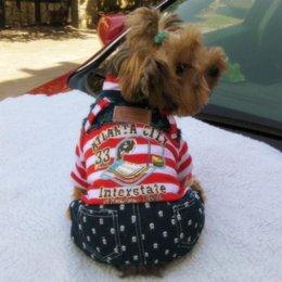Головные уборы для собак для продажи-Платье зимы свободной перевозкы груза новое 2016 горячее маленькое пальто красное и белое striped с шлемом картины собаки ноги 4 ногтей для собак