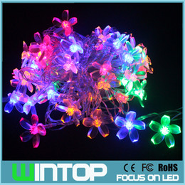 Wholesale AC220V m leds Colorful Soft Flowers Led String Flashing Holiday Lights Flexible Garlands with Modes for Christmas Wedding
