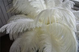 Wholesale 100 pcs Ivory ostrich feather plume for wedding centerpiece Wedding decoraction party feather centerpiece festive decor
