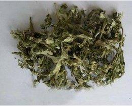 Wholesale Cheap moxa wormwood Artemisia leaves of wormwood leaves feet preferred regimen necessary g