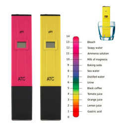 Wholesale Accurate Durable Digital pH Meters Water Soil Tester Acidity Acid Testing Pen Hours Usage for Aquarium Pool Water Laboratory tinyaa