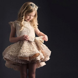 Luxury Embroidery Girls Pageant Dresses 2017 Cap Sleeves Ruffles Lace Applique Short Flower Girl Dresses For Wedding Kids Party Dress