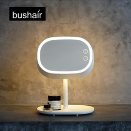 Bushair 2-in-1 LED Makeup Mirror Lamp, Table Stand Cosmetic Mirror Night Light, Chargeable Lithium Battery,Beside Lamp