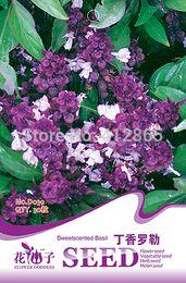 Wholesale 30pcs Aromatic Plants Ocimum gratissimum Seeds Original Bag Bonsai Basil Seeds Purple Perilla Seeds bags per