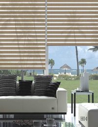 Custom Made Shade Translucent Roller Zebra Blinds in Beige Curtains for Living Room 20 Colors Are Available H04-002