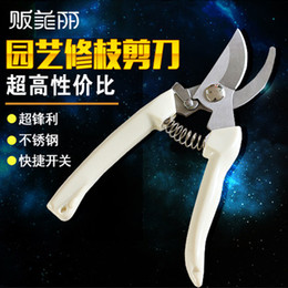 Wholesale Garden Shears pruning Tools Stainless Steel Pruners Scissors Gardening Gear Slip Resistant Handle