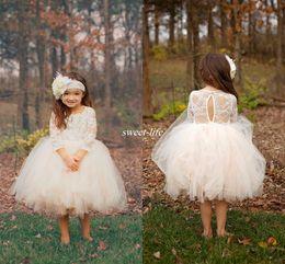 Cute Ball Gown Boho Country Wedding Flower Girl Dresses Illusion Long Sleeve Tulle Skirts Tea Length 2019 Cheap Baby Kids Communion Dresses