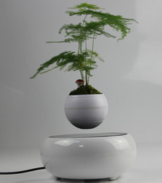 Wholesale DHL Hot sale magnetic levitating plant bonsai flower display stands for home office decor
