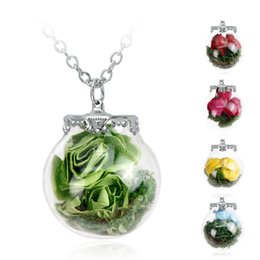 Wholesale Best gift Rose necklace Rose pendant ball glass necklace dried rose necklace silver pendant with chain sweater chain AC142