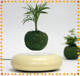 Wholesale 4 dhl free new magnetic floating air plant display rack wooden base maglev plant pot display stands