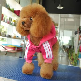 Wholesale Cotton Pet Puppy Clothes Winter Warm Costum Small Dog Coat Hoodie Provide XXL for Pet Dogs