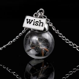 Wholesale Wish Hope Dandelion Seeds Necklace Dried Plant Specimens Eternal Life Glass Pendant Necklace Sweater Accessories Beautiful Gifts