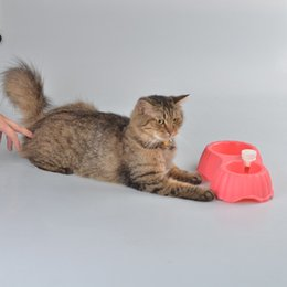 Anti-Slip PP Pet Dog Cat Drinking Water and Food Dual Bowl Small Medium Dogs Cats Portable Feeders
