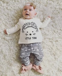 Wholesale Ins Hot Selling Infant Baby Clothes Sets Baby Hedgehog Print Spring Autumn Long Sleeve T shirt With Matching Pants Two Piece Sets