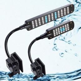 Wholesale Swimming Pool Accessories Skimmer Aquarium Filter Led Mode Fish Tank Aquarium Clip Lamp Adjustable Soft Arm White Light