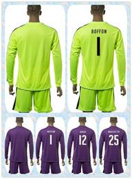 Wholesale Fast Uniforms Kit Italy European cup BUFFON SIRIGU MARCHETTI Soccer Jersey Long Sleeve Yellow Purple Green Goalkeeper Shirt