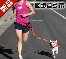 Wholesale Best price New Buddy System Hands Free Nylon Pet Dog Leash Lead Running Jogging Hiking Training Walk for Dogs Colors
