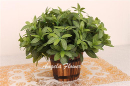 Wholesale plant berries Rustic fresh cuckoos artificial plants Simulation of green plants artificial flower home decoration