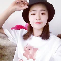 Wholesale Logotipo de la caja de la moda de América Camiseta del monopatín del verano de la alta calidad divertida del elefante rosado Camiseta superior del algodón de la calle de las mujeres de los hombres de la tapa