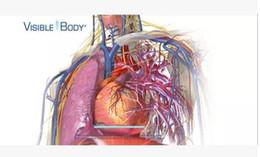 3D anatomy software English original A18 Visible.Body