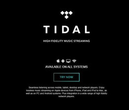 Wholesale USD TIDAl Hifi account household month mobile phone app and computer universal Premium
