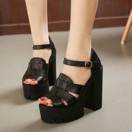 Cheap Chunky Heels High Platform Sandals  Free Shipping Chunky