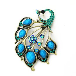 Wholesale Vintage Antique Gold Turquoise Peacock Brooch Pin Resin Brooches Jewelry Garment Decoration Accessories