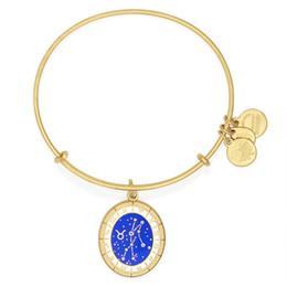 Wholesale 2016 new design alex and ani bangles Taurus Celestial Wheel Charm Bangle bracelet