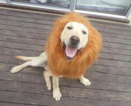 Купить Онлайн Головные уборы для собак-Парик собаки короля джунглей собаки собаки любимчика свободной перевозкы груза высокого качества: один львев изменения