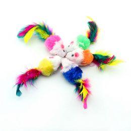 Wholesale Pet supplies Cat Toy Plush mouse color feather multi color Puppy Cat fashionable sounding toy