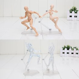 Wholesale Male Female Edition Figma He She Skin Body Model DIY Toy Material High Movable Property