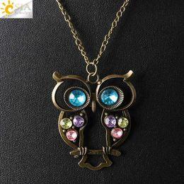 Wholesale CSJA Vintage Owl Bird Pendant Sweater Long Chain Necklace Antique Bronze Plated Women Jewelry Pink Purple Blue Green Rhinestone Bead E369