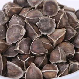 Wholesale 500g Organic India Moringa Seeds Horseradish Seeds Powerful Body Purifier Great Effect on Body System Healthy Drink Food