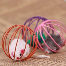 2017 bola jaula El hogar encantador del animal doméstico suministra los juguetes interesantes del gato del animal doméstico La bola de la jaula del ratón del hierro de la simulación 1 PC D08 barato bola jaula
