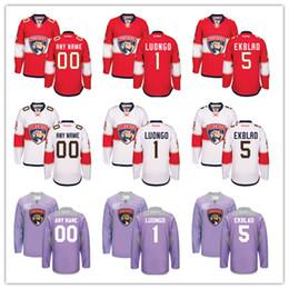 Wholesale Customized Men s Florida Panthers Jersey Roberto Luongo Aaron Ekblad Brian Campbell Custom Any Name Any Number Hockey Jerseys S XL