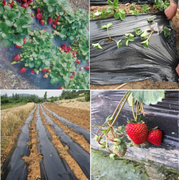 Wholesale Black agricultural film strawberry PE film garden flower greenhouse plastic garden mulch film mm thickness
