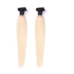 Brazilian Ombre Straight Hair Extensions 8A Brazilian Virgin Hair 2 Bundles Unprocessed Human Hair Weaves Tangle Free T1B 613 Bundles