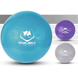 Wholesale Winmax Fashion Hot Style cm Exercise Workout Fitness PVC Gym Yoga Ball Anti Burst Swiss Core Ball Colors Purple Blue Grey
