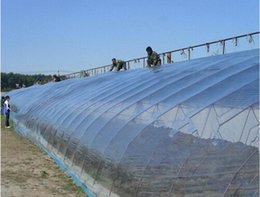 Wholesale 16 Square mx4m Thickness s Thickening Plastic Vegetables Greenhouse Film Mulch Use For Agriculture Farming no2