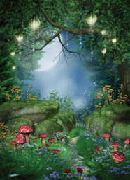 Wholesale Vinyl Custom Photography Backdrops Props Digital Printed Fairy tale theme Photo Studio Background TH
